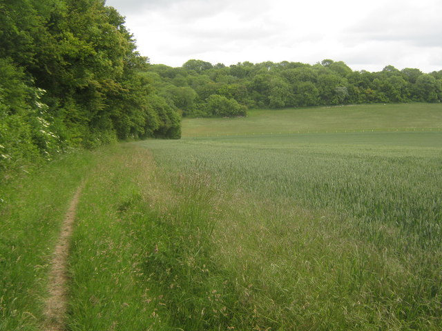Bridleway past Spong Wood