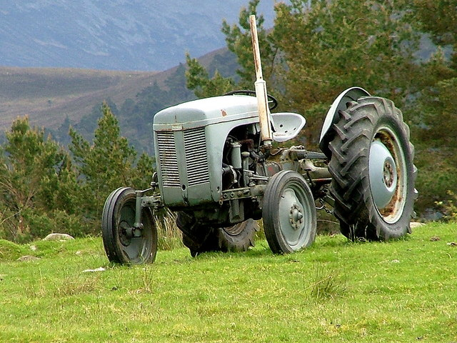 Ferguson tractor at Whitewell Croft