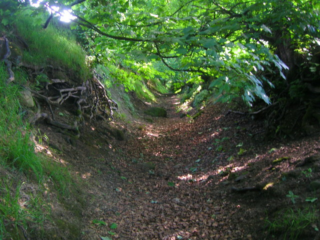 Sunken path north of Eastby
