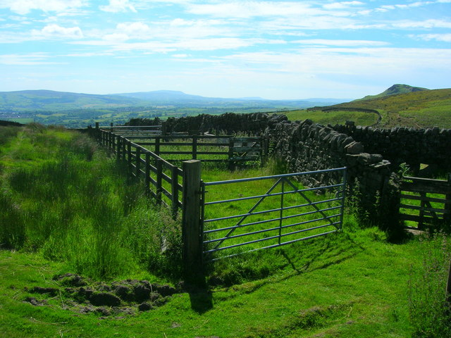 Sheep pens at Eastby Gate