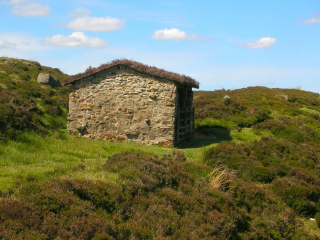 Smaller of two shooting huts at Hutchen Gill Head