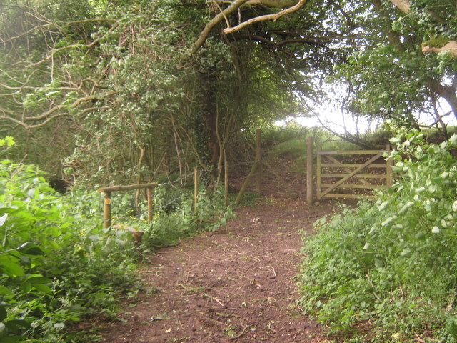 Bridleway and footpath junction near Maxted Street