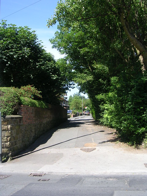 Woodhead Lane - Street Lane