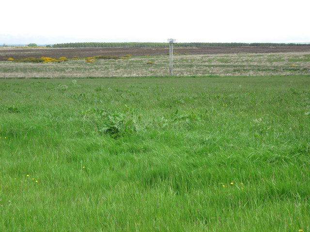 Power line across Bylbster Moss (moorland)
