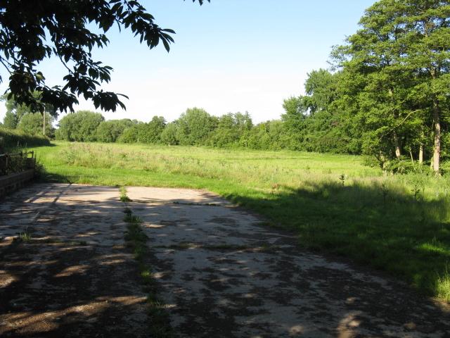 Field off Elmley Lane