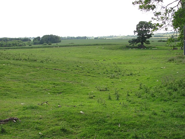 An undulating field, Edington