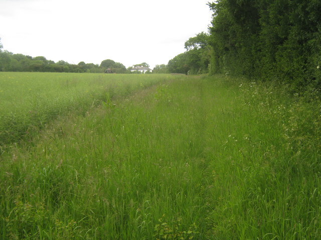 Footpath towards Courthope Farm