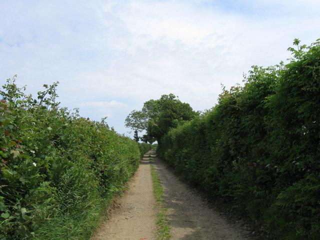 Country Track near Dean