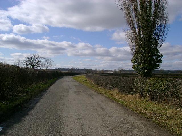 Street  Lane  looking  west