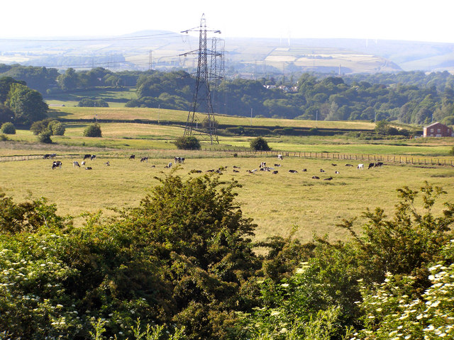 View towards Harefield Hall