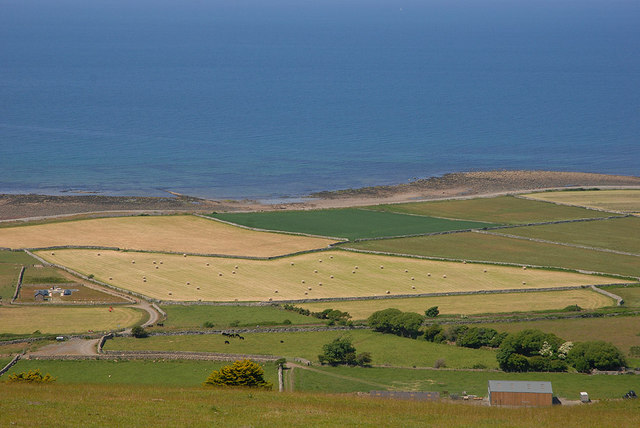 Hay fields by the sea