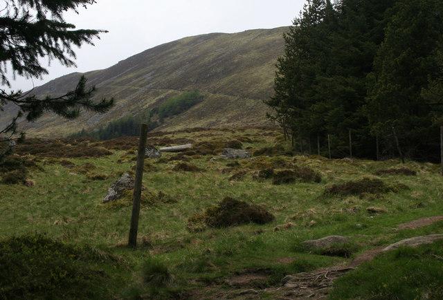 Kilbo Path on the Shank of Drumfollow