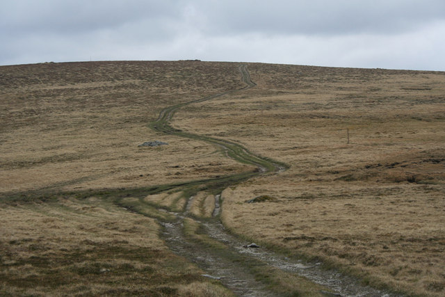 Finalty hill tracks