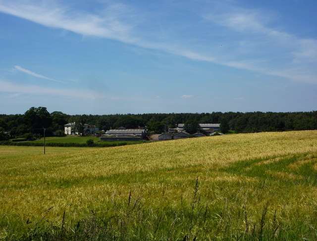 Farmland south of Elkesley