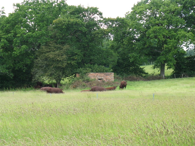 Cattle guarding pillbox, guarding River Uck