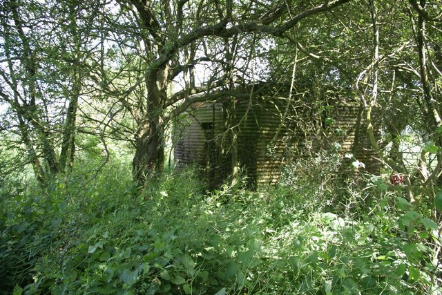 Pillbox in the nettles