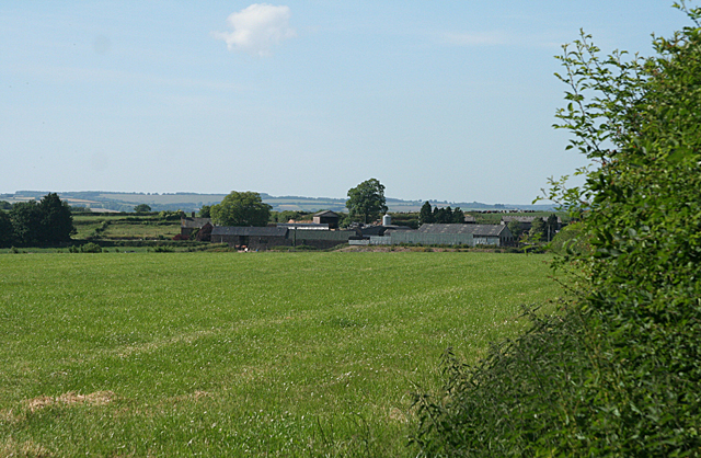 Hockworthy: towards Stallenge-Thorne Farm