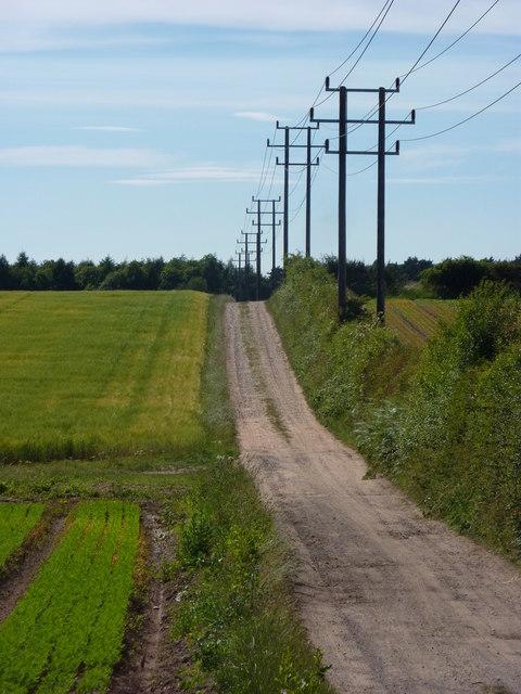 Track west of Elkesley