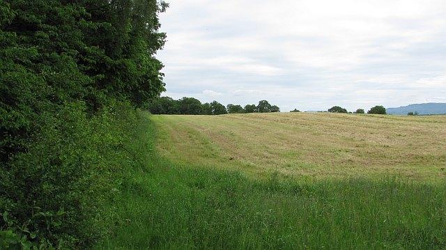 Mown field, Blairhosh