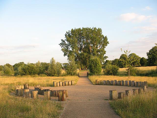Sutcliffe Park: the central node