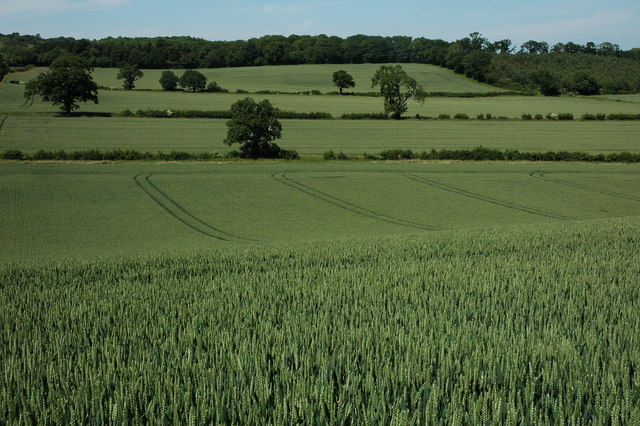 Arable land, near Weethley
