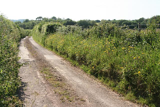Hockworthy: lane near East Holelake