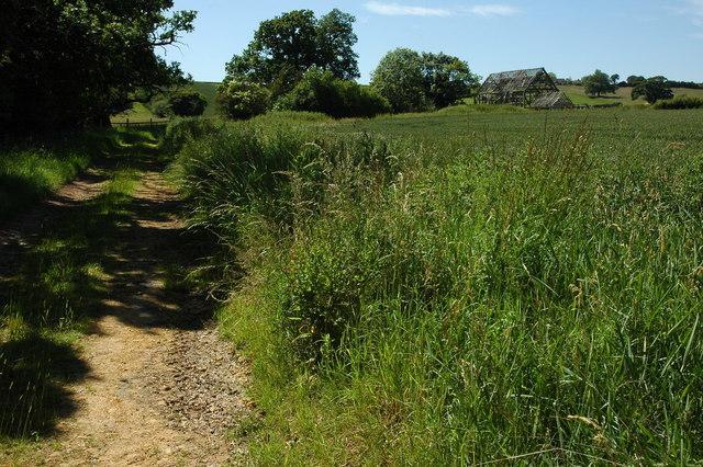 Track on the Ragley estate