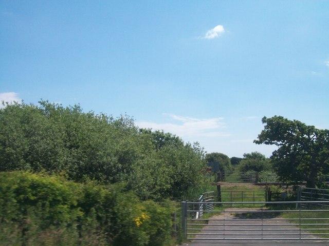 Level crossing on a farm track