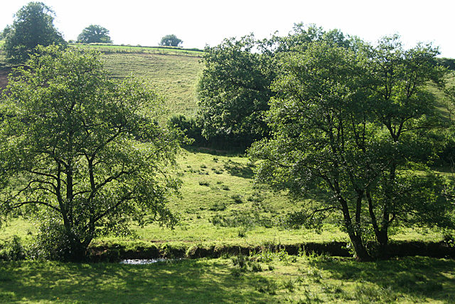 Hockworthy: Lowman valley