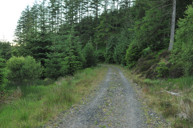 Forestry road in Barcaldine Forest