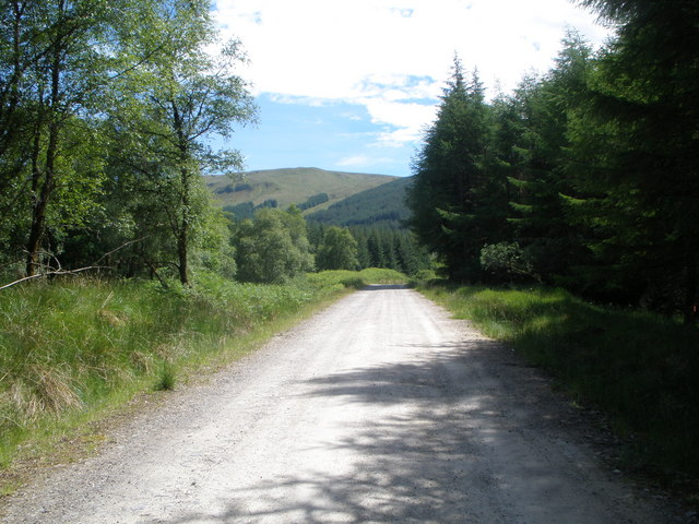 Forest and wind farm road running alongside the Brannie Burn