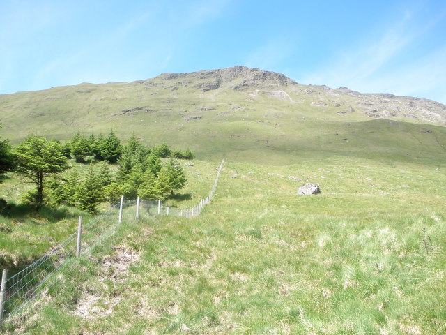 Fenceline at the edge of the forest below Stac a'Chuirn