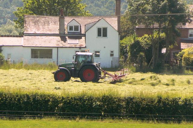 Haymaking near Bunny