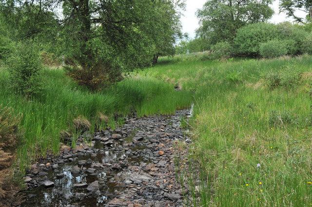 Small stream near Loch Awe