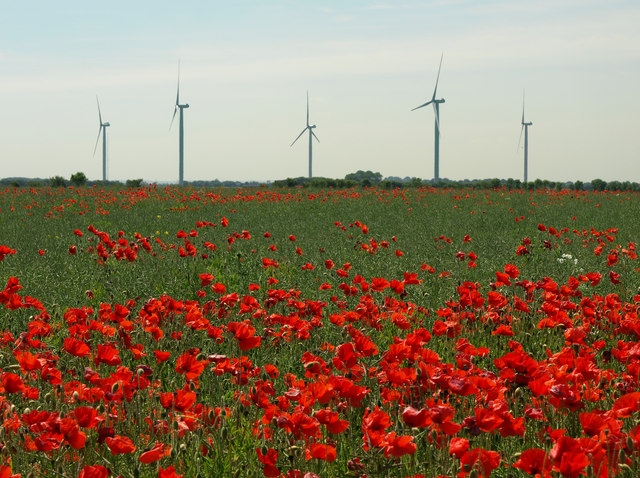 Power and Poppies