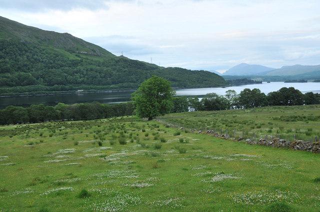 Grazing field near Tervine