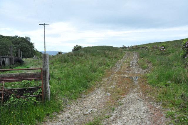 Farm track near Loch Awe