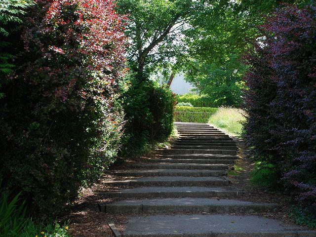 Steps to Kilmory Road