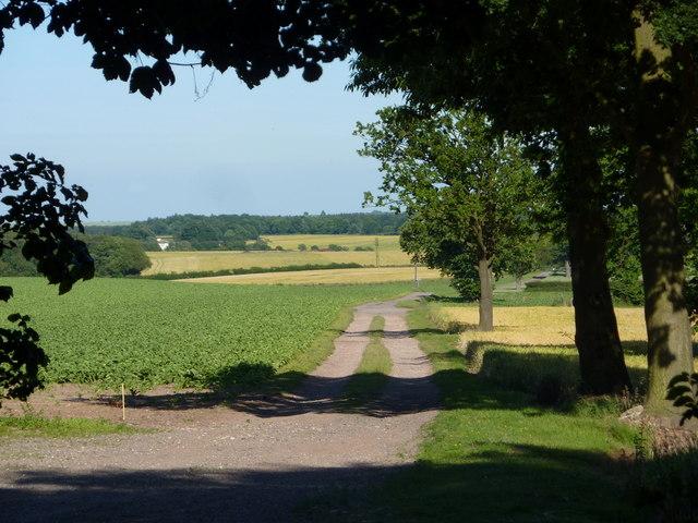 Track near Normanton Hill