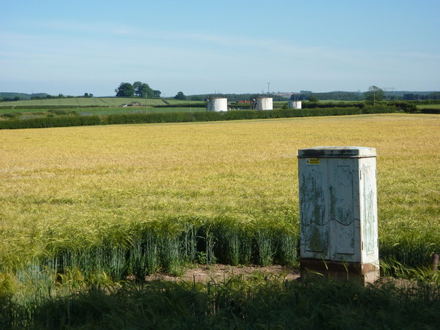 Fields between Normanton Hill and Bothamsall