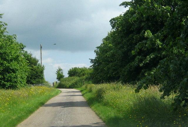 The drive from Harvard Farm - Closworth