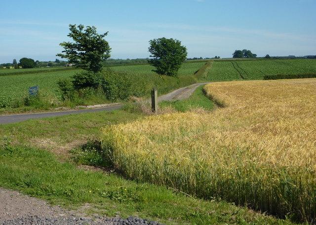 Field corner by track junction