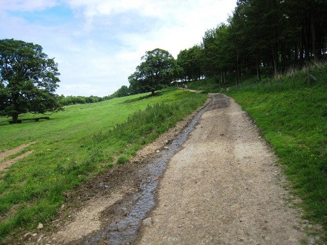 Track near Bristow High Gill
