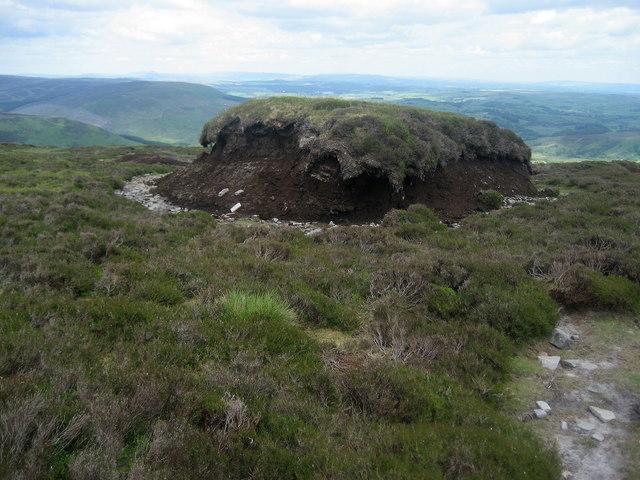 Peat Hagg on Totridge