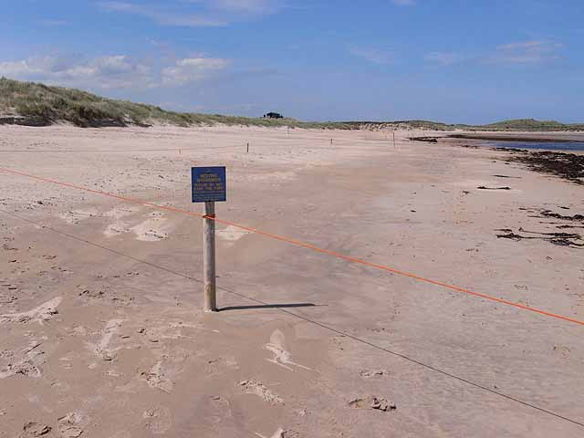 Boundary of the tern colony in Beadnell Bay