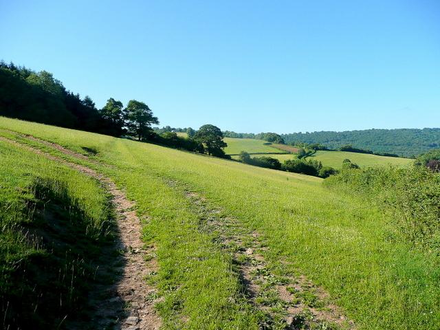 Leys Hill