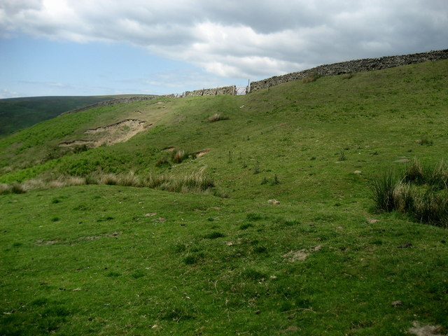 Upland Pasture below Mellor Knoll