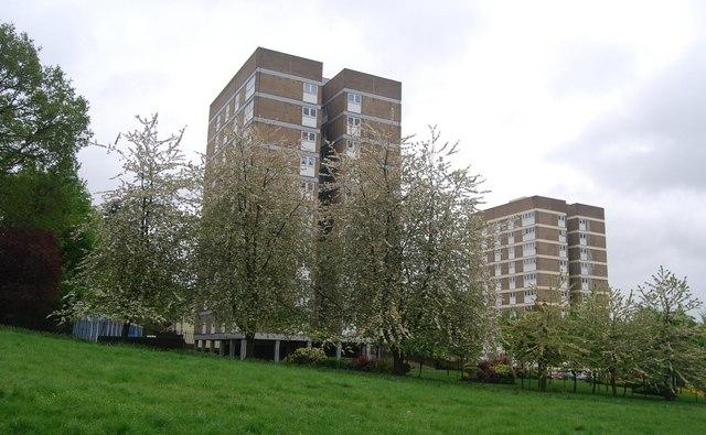 Towerblocks on the edge of Westow Park