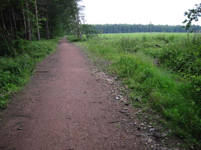 Robin Hood Way near Truman's Lodge