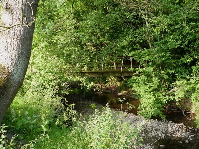 Footbridge over the Harley Brook